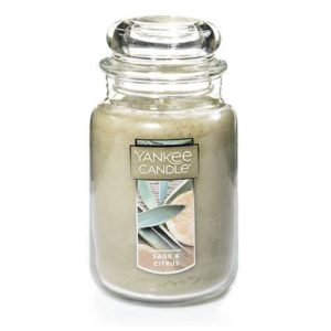 Yankee Candle Sage and Citrus Large 22oz Glass